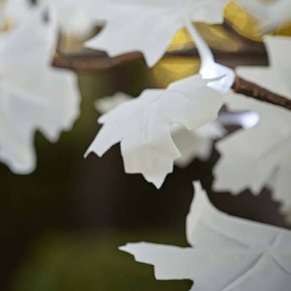 White maple leaves