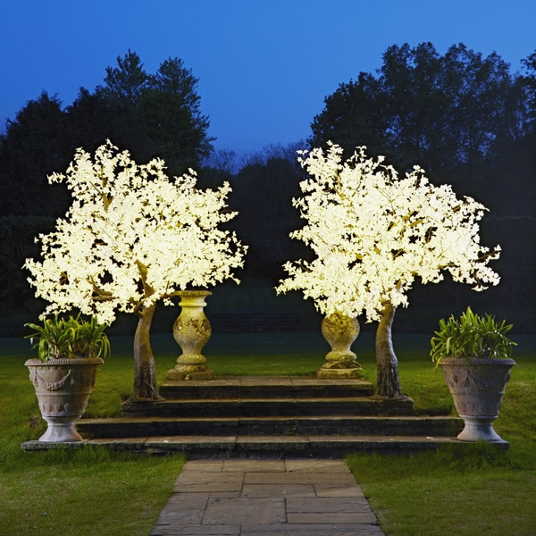 Grande LED Maple tree to hire from Twilight Trees. You can also buy a selection of our LED Trees via Twilight Living where you can bring Twilight Tree magic home. Click to find out more.