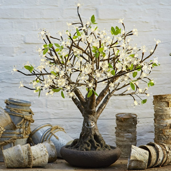 Bonsai LED Cherry Tree to buy or hire from Twilight Trees. You can also buy a selection of our LED Trees via Twilight Living where you can bring Twilight Tree magic home. Click to find out more.