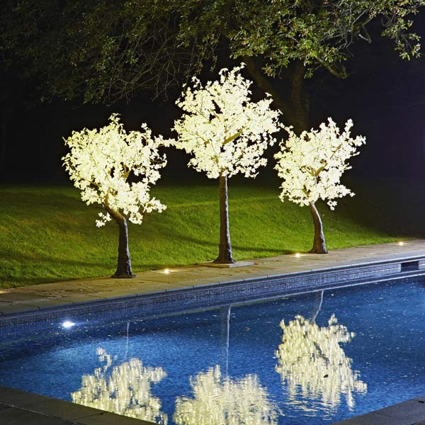 Hire Lollipop LED Maple trees with white leaves by Twilight Trees
