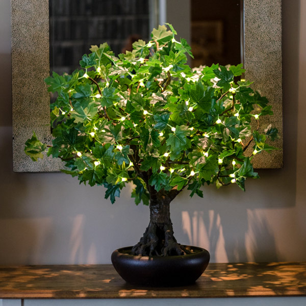 Hire green bonsai LED tree to hire from Twilight Trees. You can also buy a selection of our LED Trees via Twilight Living where you can bring Twilight Tree magic home. Click to find out more.