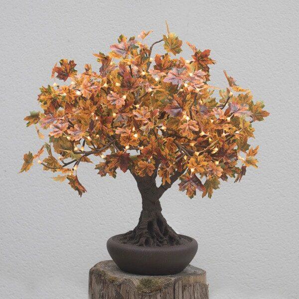 Autumnal Bonsai LED Maple Tree