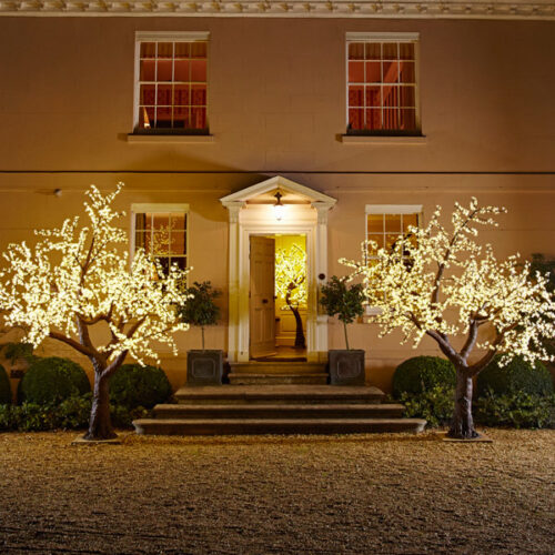 Grande LED Cherry Tree to buy or hire from Twilight Trees. You can also buy a selection of our LED Trees via Twilight Living where you can bring Twilight Tree magic home. Click to find out more.