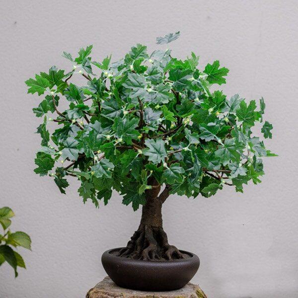 Green Bonsai LED Maple Tree