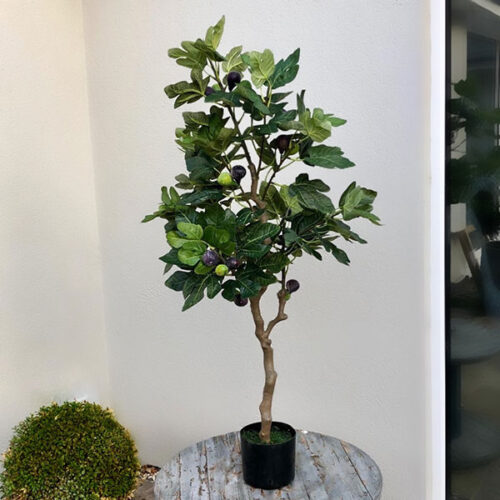 Large faux fig tree to buy or hire from Twilight Living where you can bring Twilight Tree magic home. From artificial trees to our amazing biophilia design products. Click to find out more.