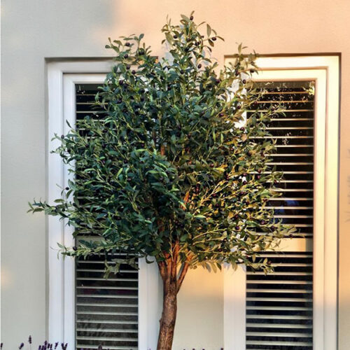 Large faux olive tree to buy or hire from Twilight Living where you can bring Twilight Tree magic home. From artificial trees to our amazing biophilia design products. Click to find out more.