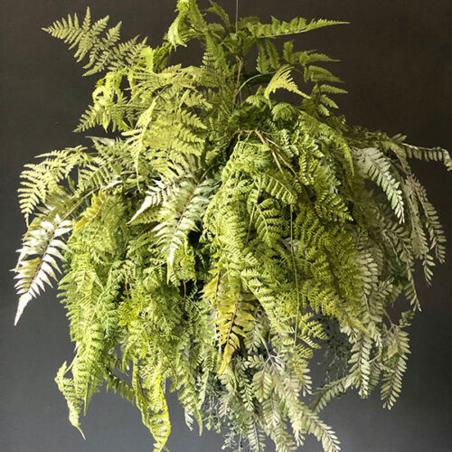 Faux fern in a messy sphere to buy or hire from Twilight Living where you can bring Twilight Tree magic home. From artificial trees to our amazing biophilia design products. Click to find out more.