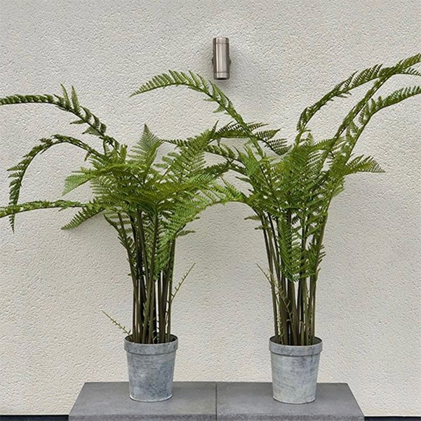 Large faux fern plant to buy or hire from Twilight Living where you can bring Twilight Tree magic home. From artificial trees to our amazing biophilia design products. Click to find out more.