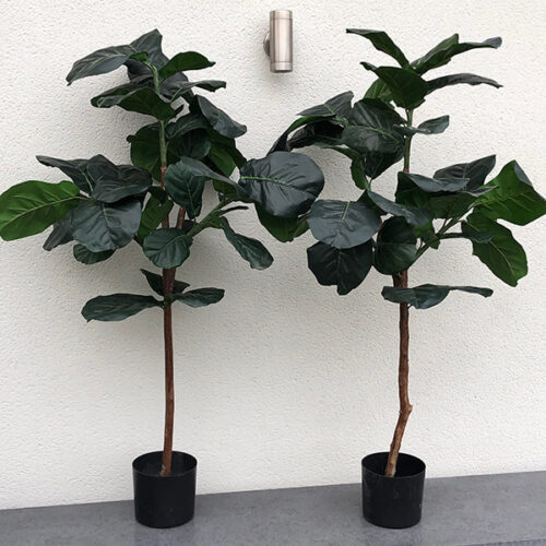 Small faux fiddle plants to buy or hire from Twilight Living where you can bring Twilight Tree magic home. From artificial trees to our amazing biophilia design products. Click to find out more.