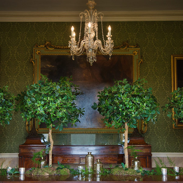 Hire small faux green trees for table displays