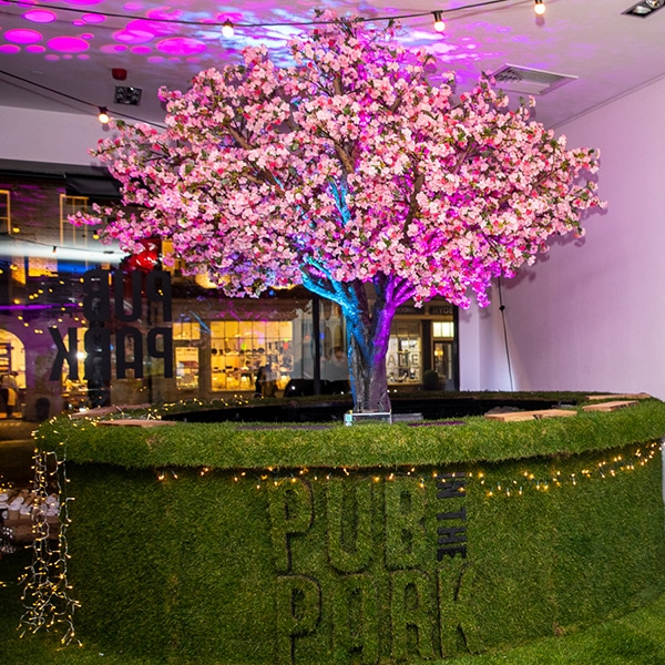 Hire grande pink blossom tree for events