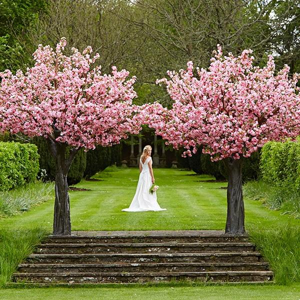 Hire grande pink blossom wedding tree