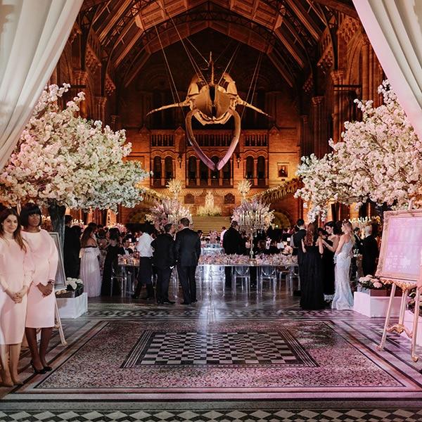 Hire white blossom wedding trees