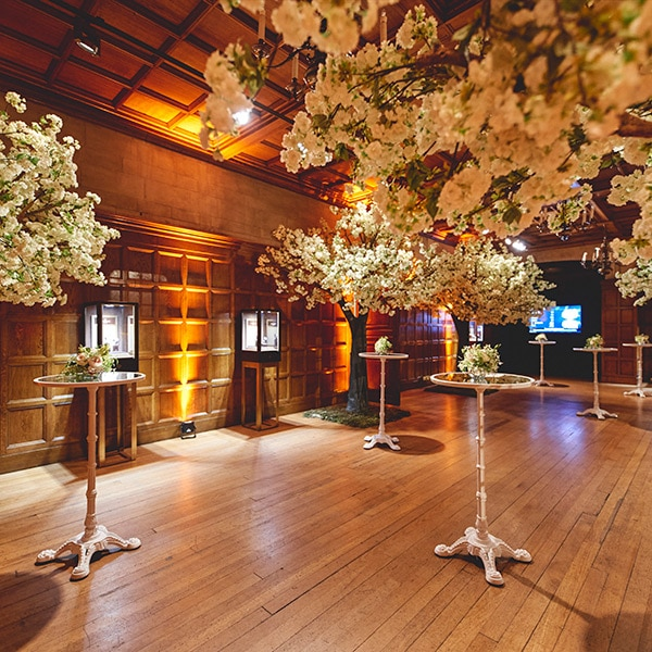 Hire white blossom trees for product launches