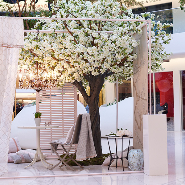 Hire white blossom trees for retail spaces