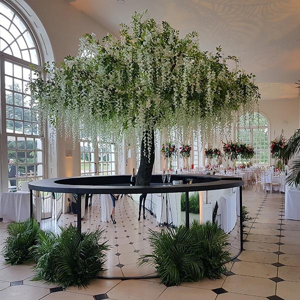 Hire wisteria trees, Kew Gardens