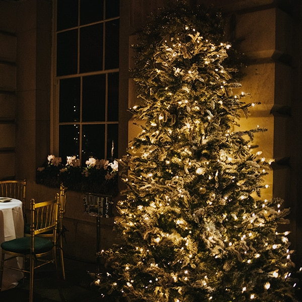 Hire LED Christmas trees for events