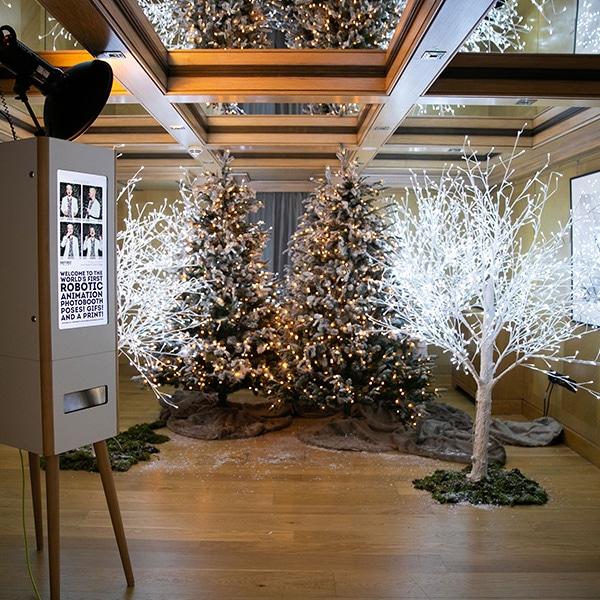 Hire LED Christmas trees - photography backdrop