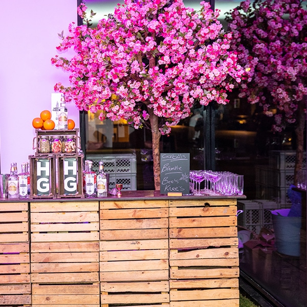 Hire pink apple blossom trees for events