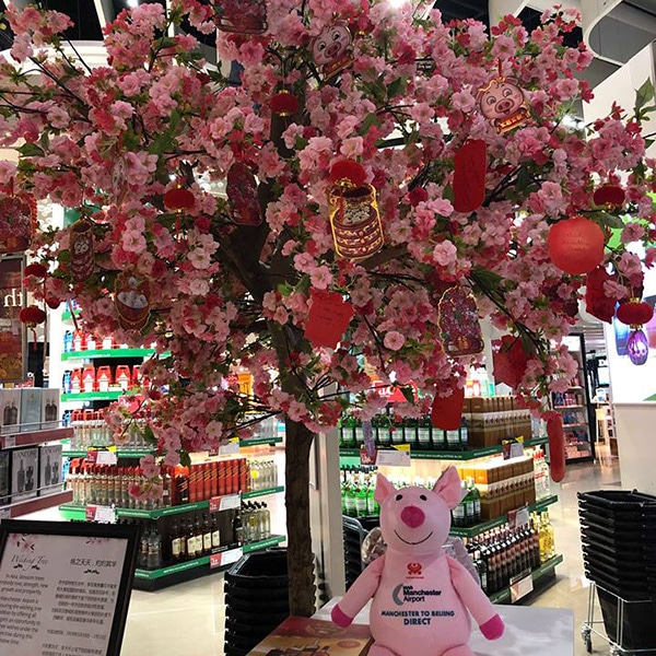Hire pink japanese blossom trees for promotions