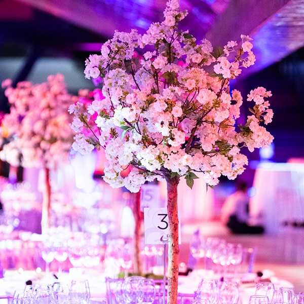 Hire white pom blossom trees for table displays