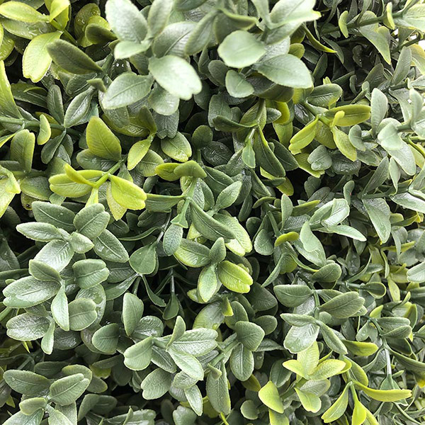 Buxus faux topiary close-up