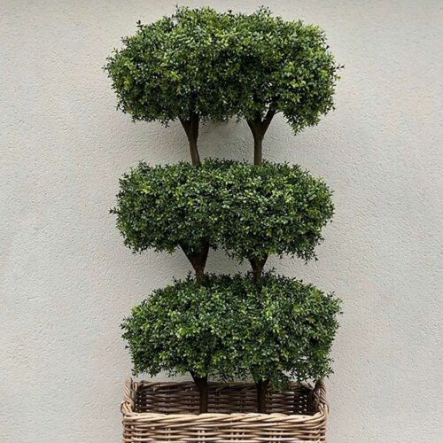 Boxus three level topiary to buy or hire from Twilight Living where you can bring Twilight Tree magic home. From artificial trees to our amazing biophilia design products. Click to find out more.