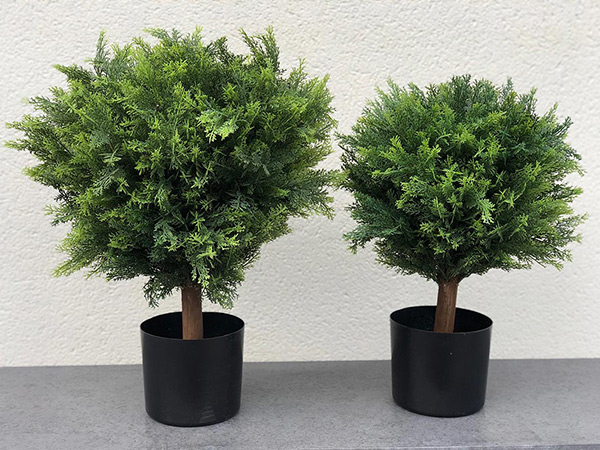 buxus-ball-faux-topiary-twilight-trees