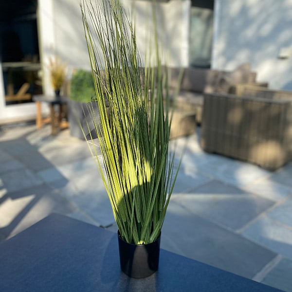 Faux Green Grass to buy or hire from Twilight Living where you can bring Twilight Tree magic home. From artificial trees to our amazing biophilia design products. Click to find out more.