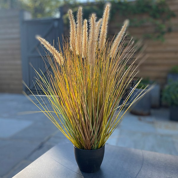 Faux Pampas Grass to buy or hire from Twilight Living where you can bring Twilight Tree magic home. From artificial trees to our amazing biophilia design products. Click to find out more.