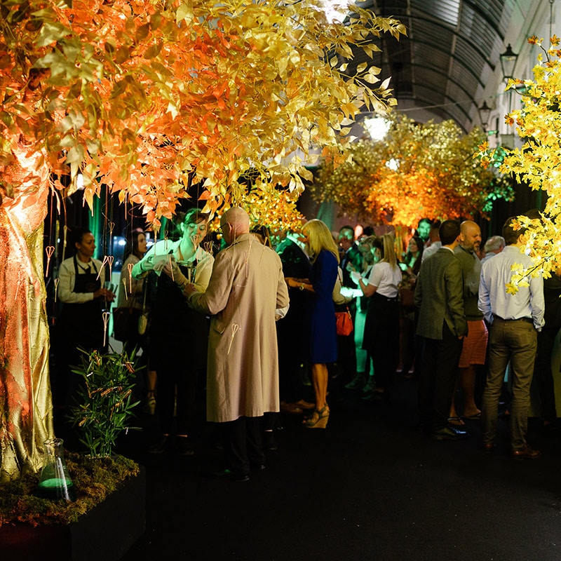 Hire gold trees for events