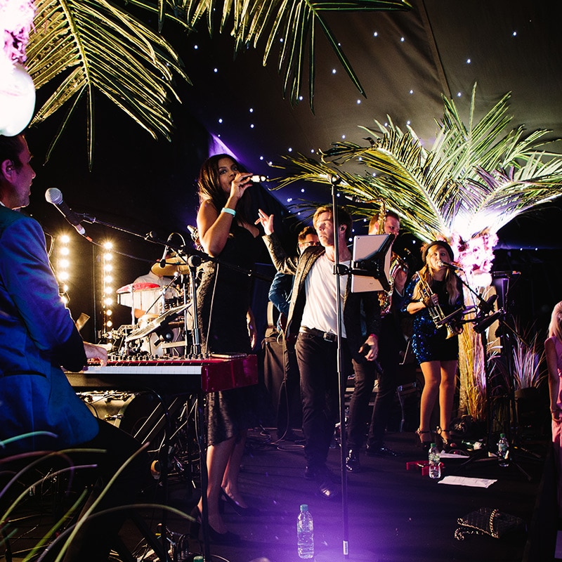 Hire LED Palm Trees for parties and events
