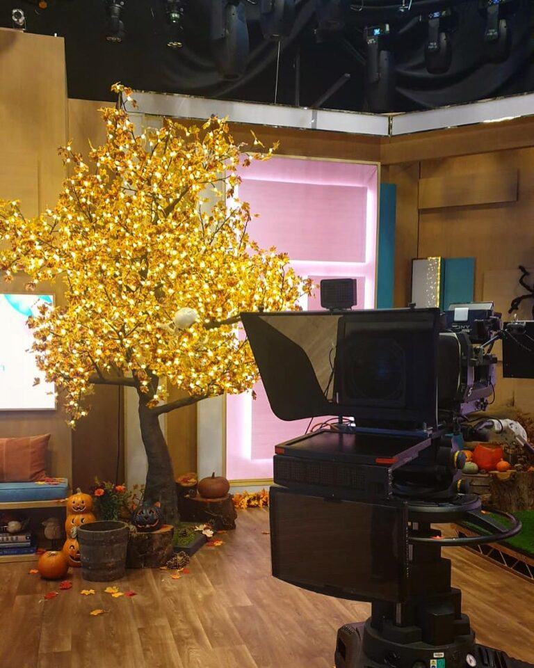 Twilight Trees' Grande LED Maple Tree features on ITV's This Morning