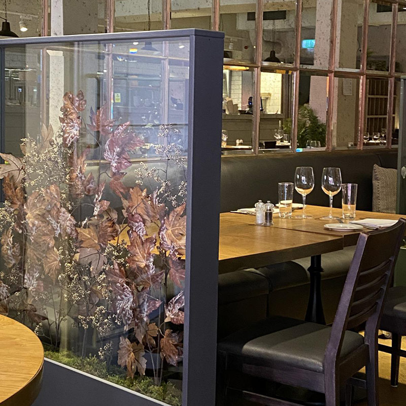 Living spaces domes and glass screens with biophilic design for the workplace or home from Twilight Trees. Click to view our stunning privacy screens and room dividers.