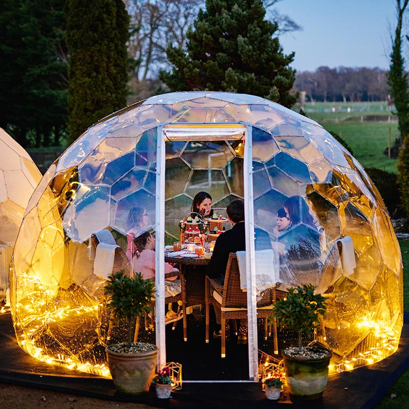 Garden parties with a twist with one of our garden domes. Twilight Trees offer creative solutions to transforming spaces with biophilic designs. Our garden domes are available to buy and hire. Click to shop glass screens and more.